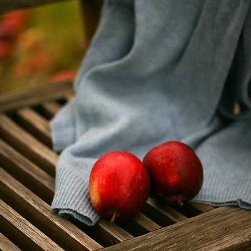 ty wybierasz, jabłka